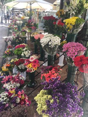 Valencia flower market