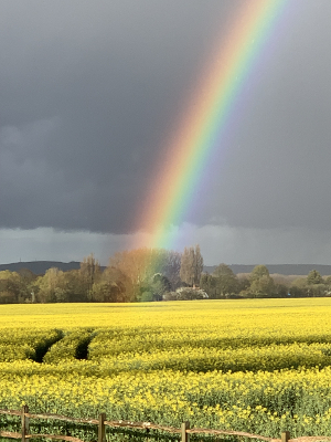 Rainbow over Field West Sussex photo by Amanda Howse