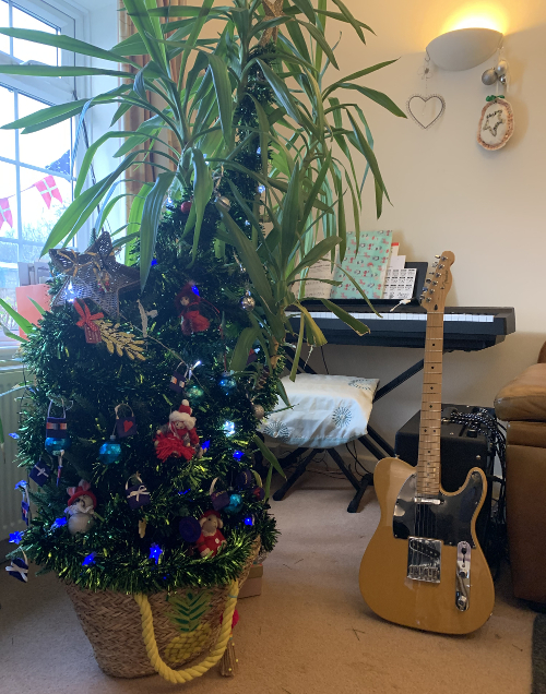 'Hybrid' Yucca Xmas Tree in Musical Sitting Room